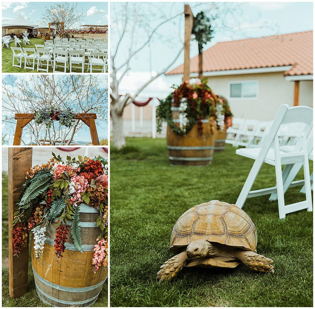 Decor for a small backyard wedding, including wine barrels, florals and greenery, a handmade arch and live tortoise.